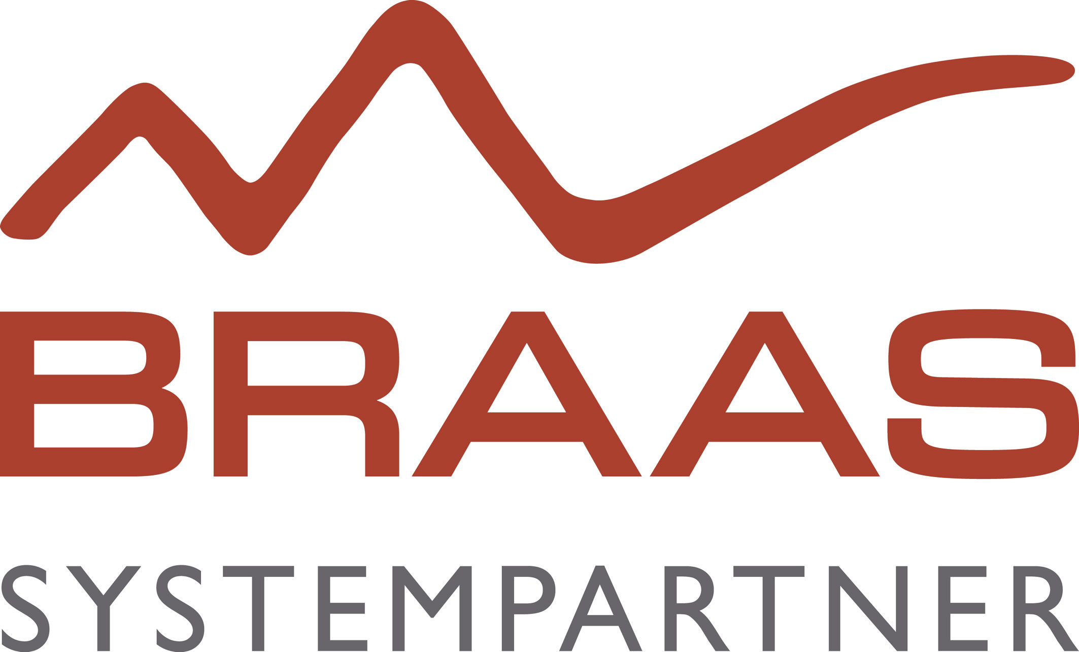 Braas SystemPartner Club